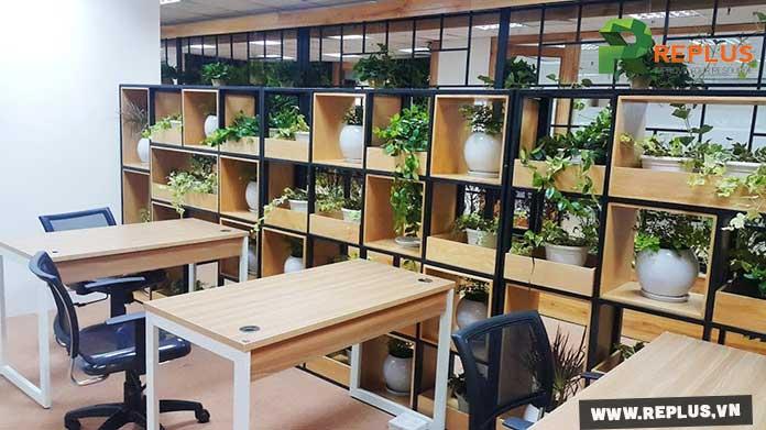 Dịch vụ cho thuê cây xanh văn phòng là xu hướng hiện nay