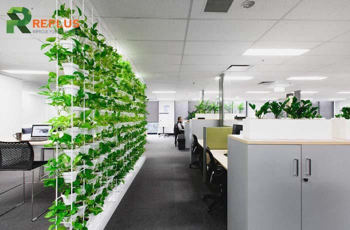 cho thuê không gian làm việc xanh